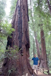 Justin next to redwoods in Muir Woods National Monument